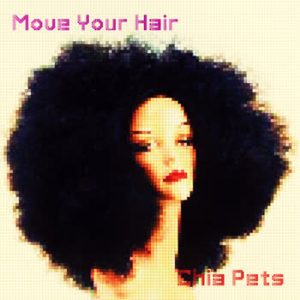 Chia Pets - Move Your Hair